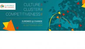Final Conference Euromed Change