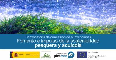 Subvenciones pesca sostenible
