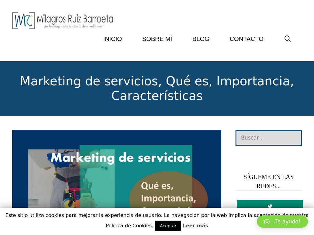 Marketing de servicios, Qué es, Importancia, Características
